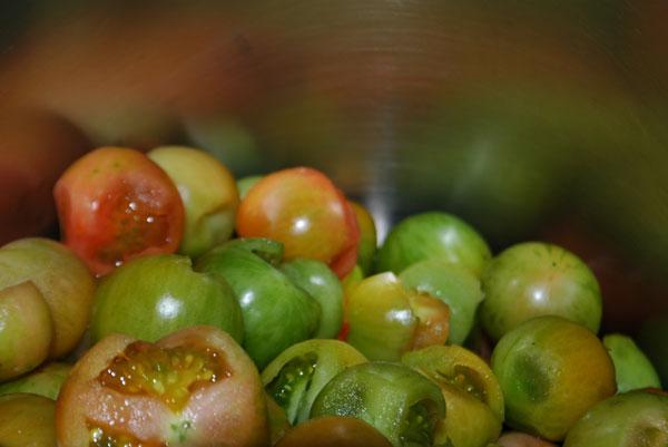 tomatoesinpot.jpg