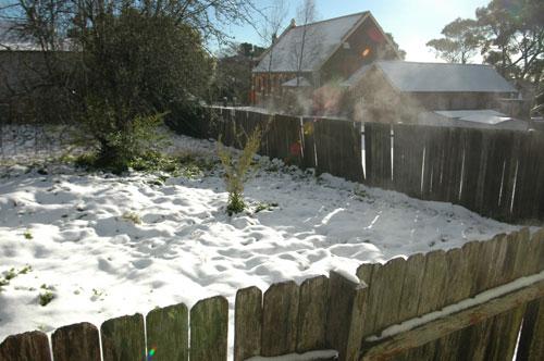 snowonfence1.jpg